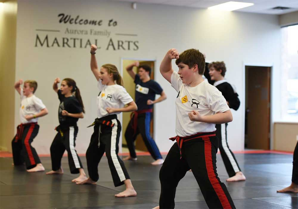 aurora martial arts difference