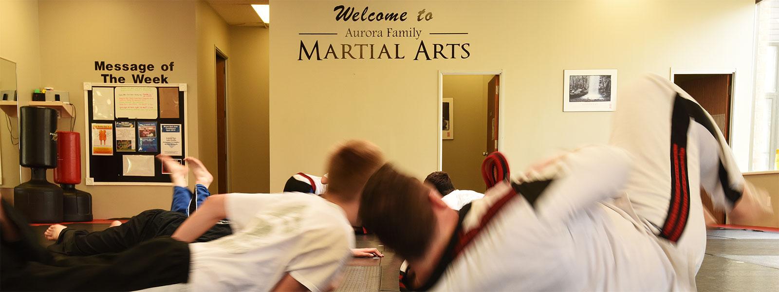 karate in aurora